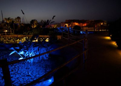 crocoparc_by_night2