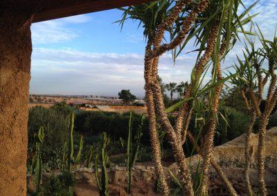 Crocoparc-Jardin-des-Cactus_9528redim