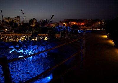 crocoparc_by_night2