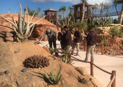 Crocoparc-Jardin-des-Cactus11.40.13