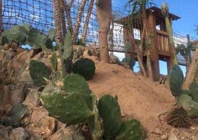 Pont de Singe Jardin des Cactus dCrocoparc