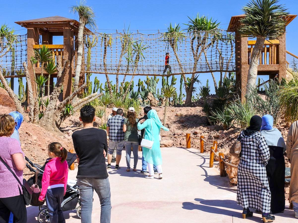 Le pont de Singe du Jardin des Cactus